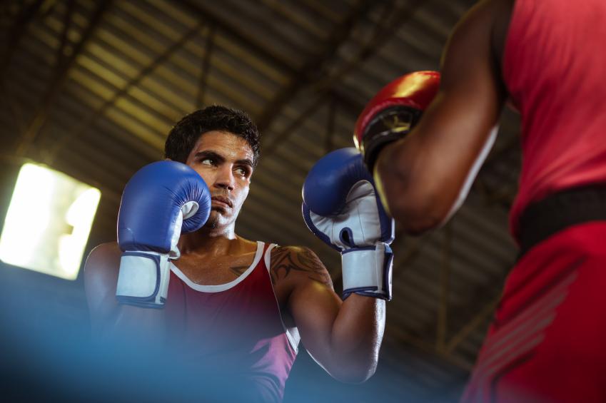 Boxer Titelseite
