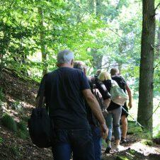 Aufstieg zur Berghütte durch den Wald